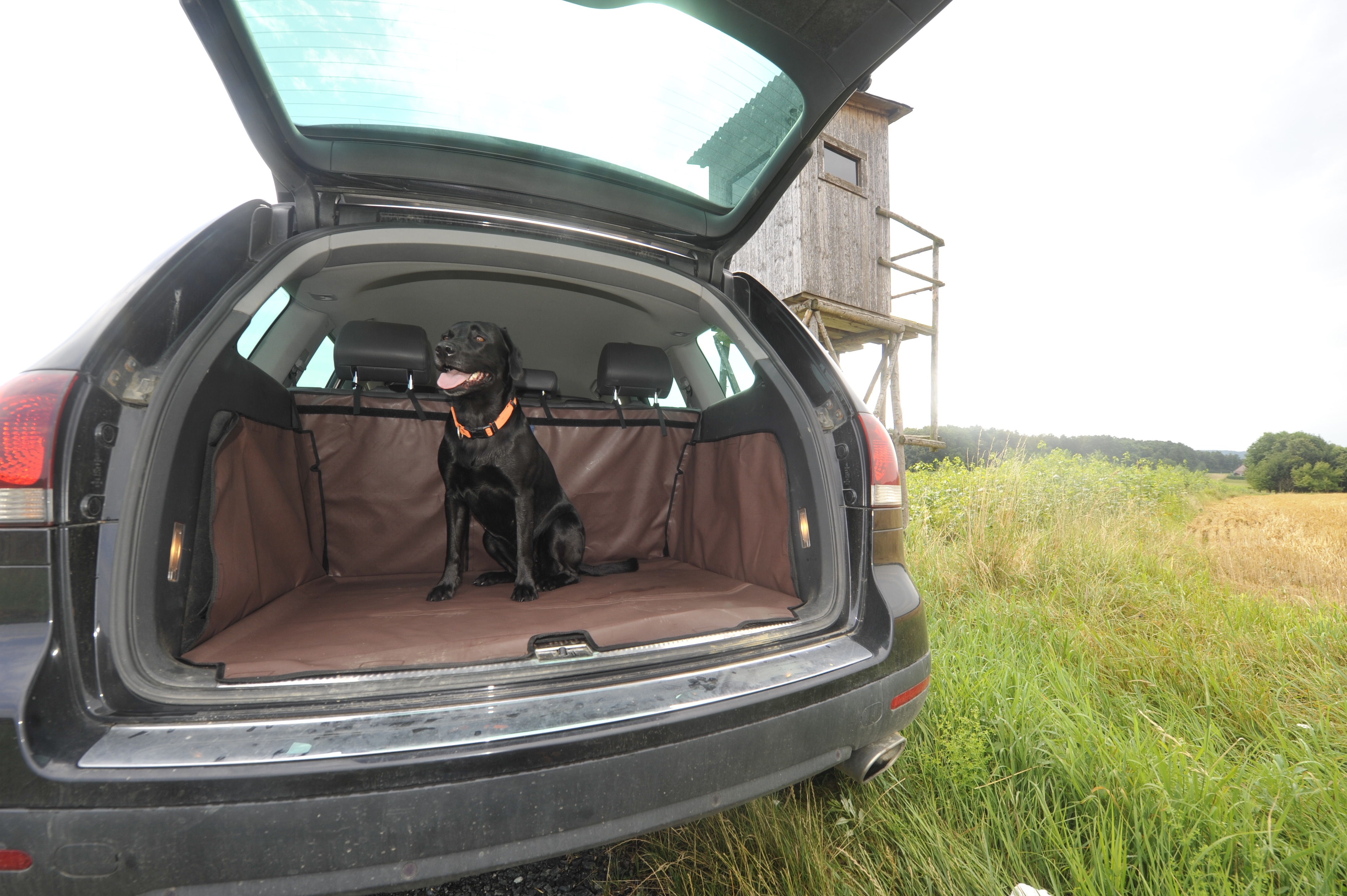 Nikon Laser Entfernungsmesser Aculon Al11 Test : Produkttest u seite jagd und natur