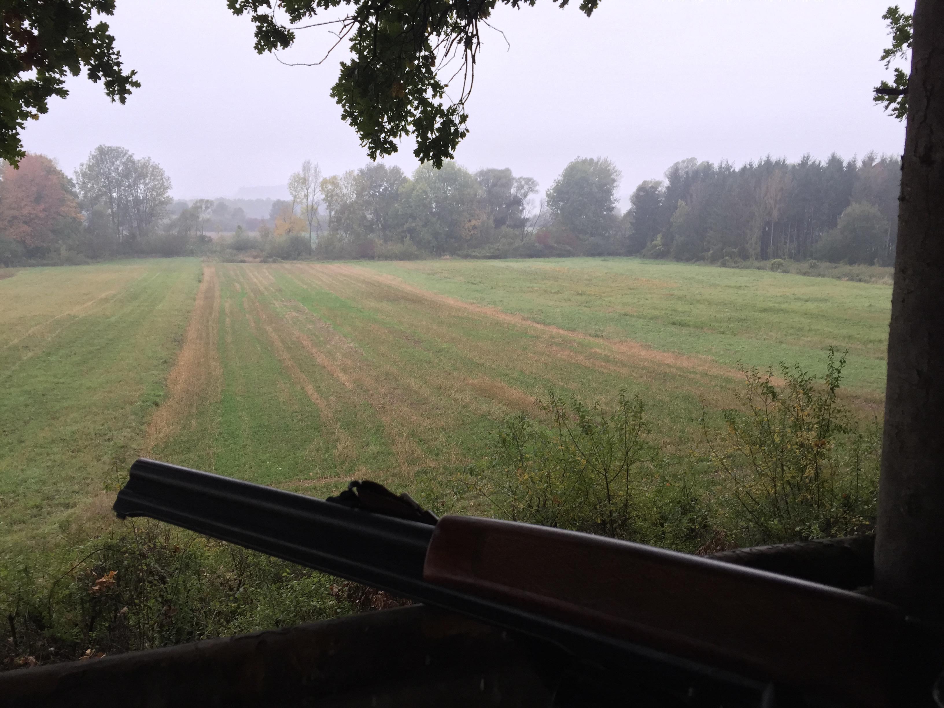 Vollmond Jagd Entfernungsmesser : Jagd und natur u alles für jäger hund outdoorfan